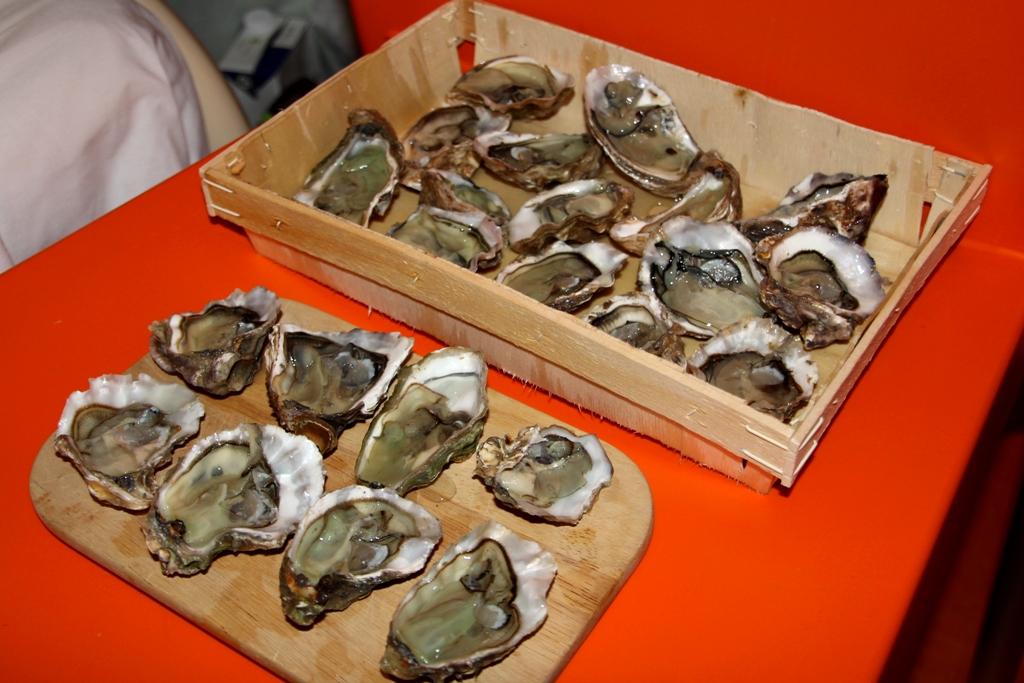 16 - Austern im Plastikhotel