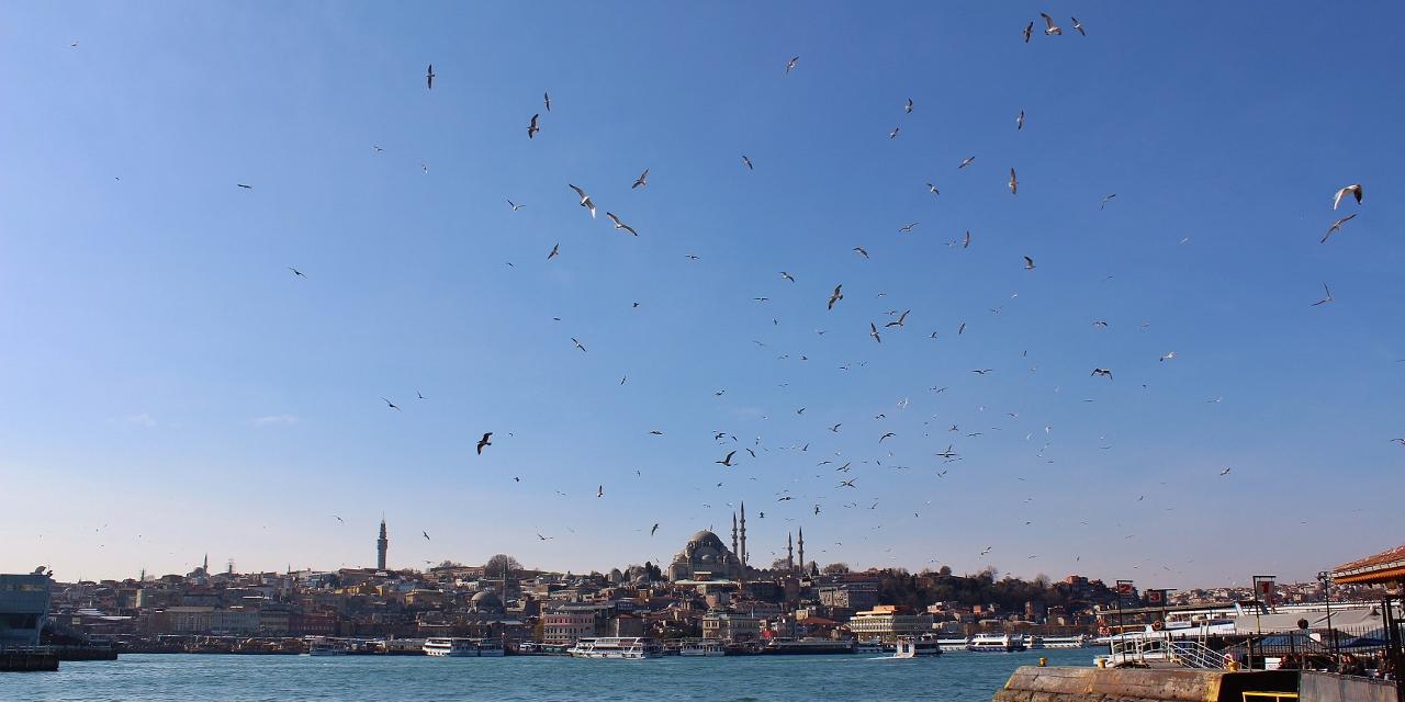 12 Karaköy