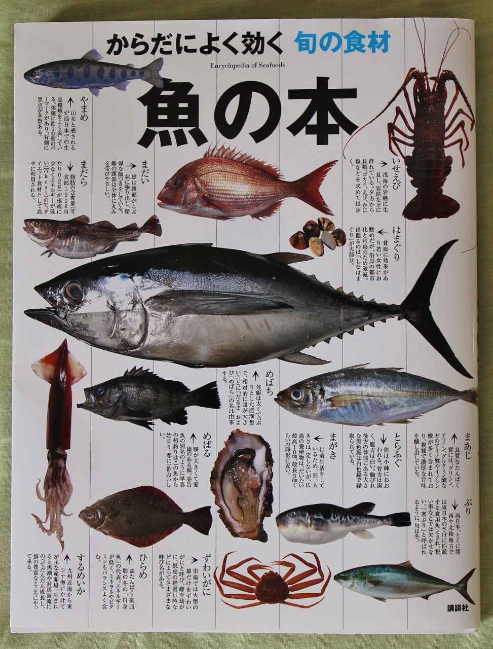 Kodansha Encyclopedia of Seafood