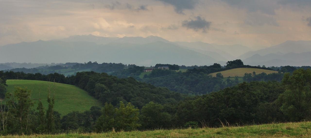 Pyrenäenvorland