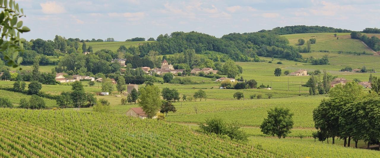 7 Côtes de Castillon