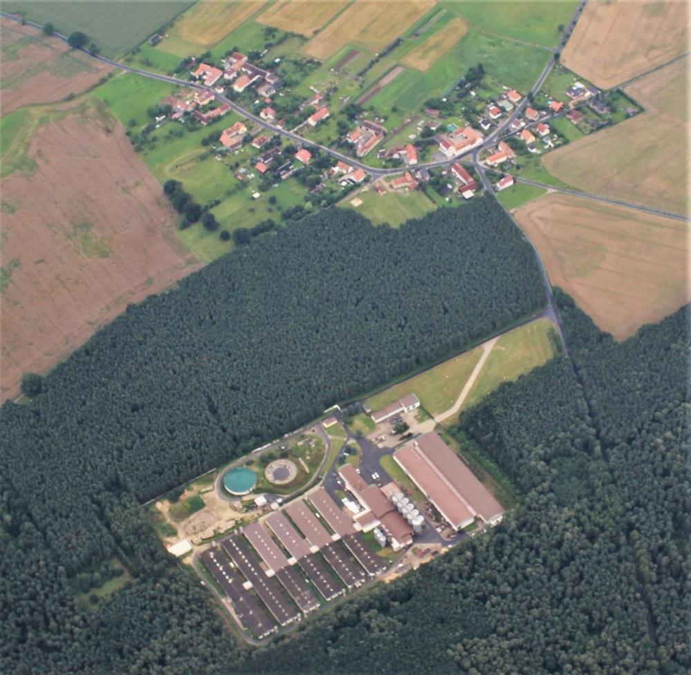 Hühnerfarm Brandenburg