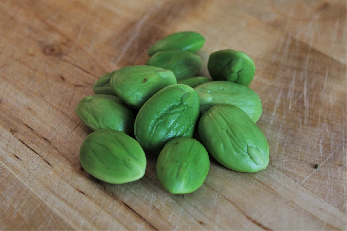 exotisches Gemüse Peteh Stinkbohnen
