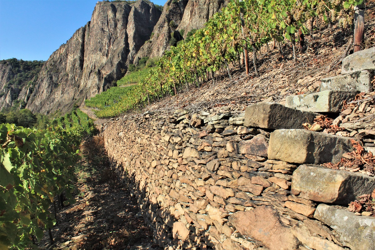 Weinreise Nahe Traisen Bastei