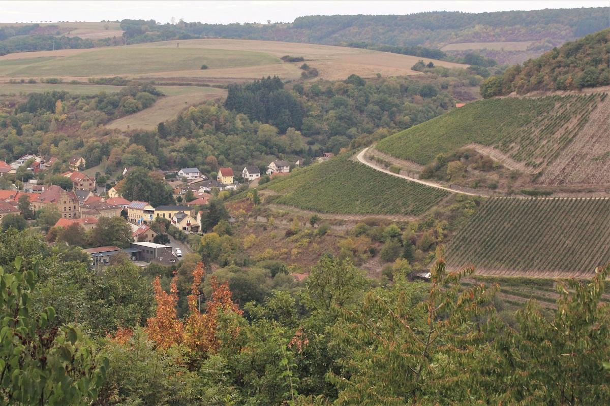 Weinreise Nahe Obermoschel Silberberg