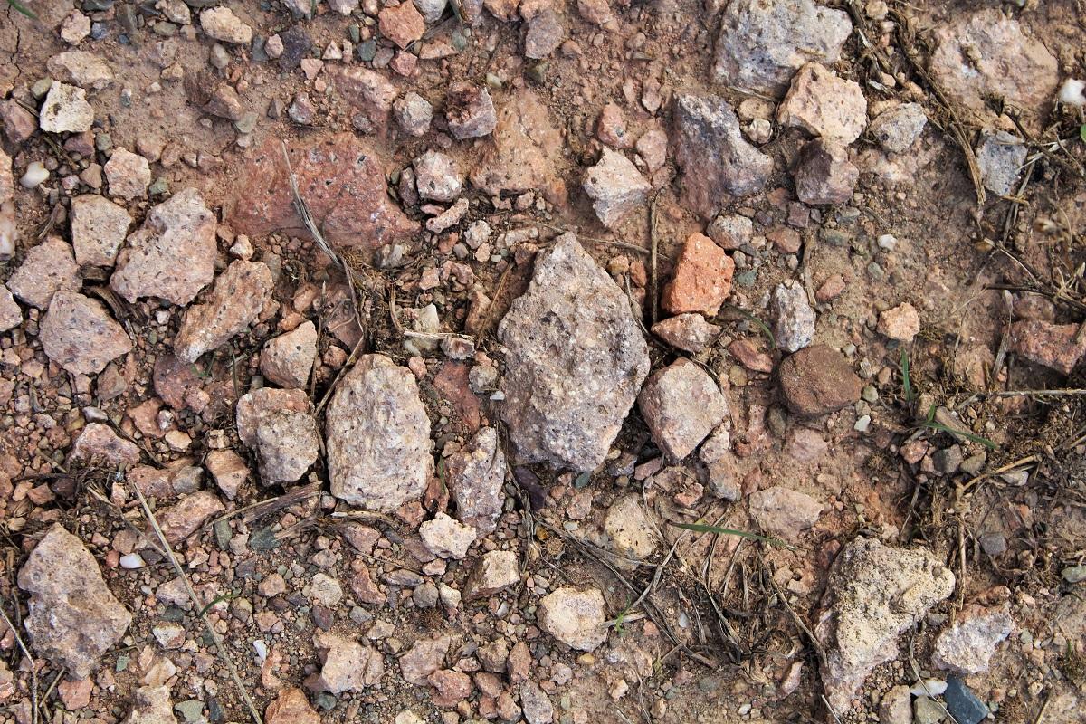 Nahe Geologie Vulkanverwitterungsboden Laubenheimer St. Remigiusberg