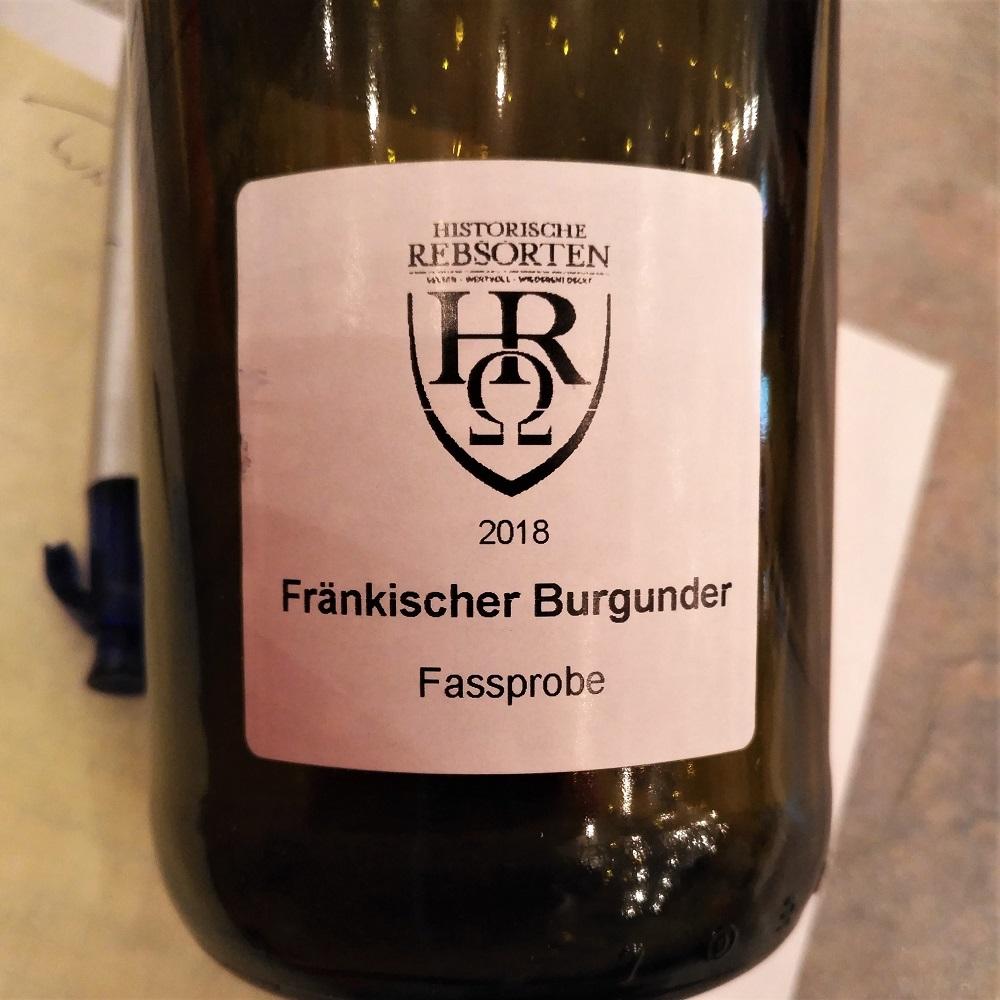 Historische Rebsorten Fränkischer Burgunder Kiefer