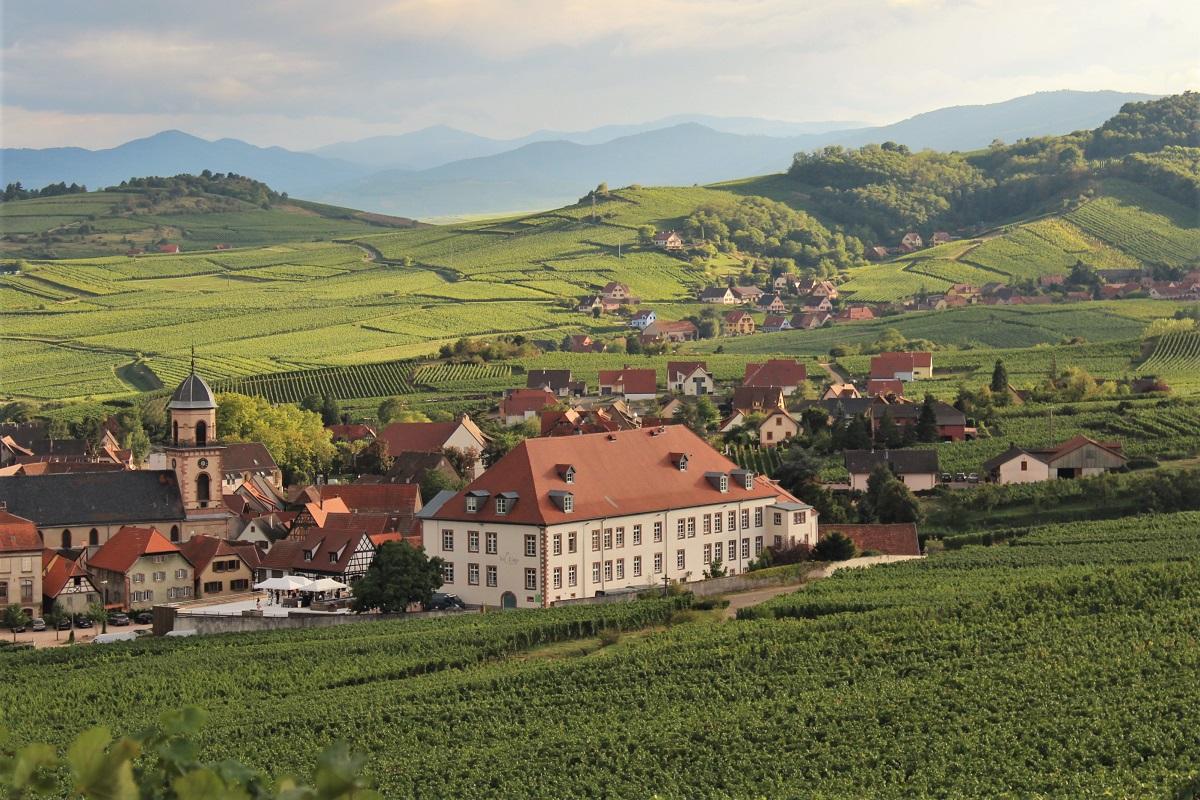 Wein Frankreich Elsass
