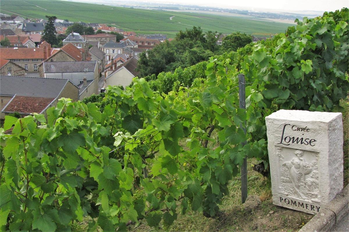 Wein Frankreich Chamapgne