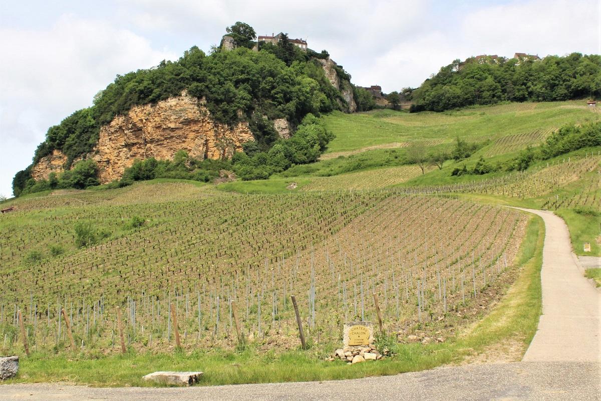 Wein Jura Château-Chalon