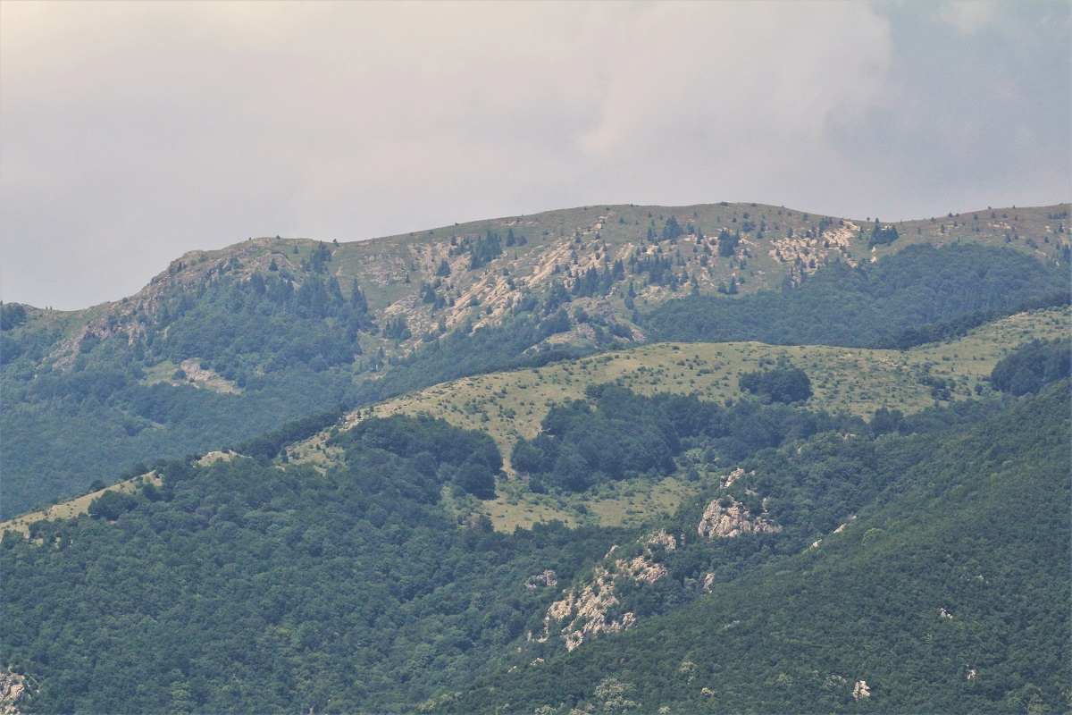 Bulgarien Nationalpark Zentralbalkan