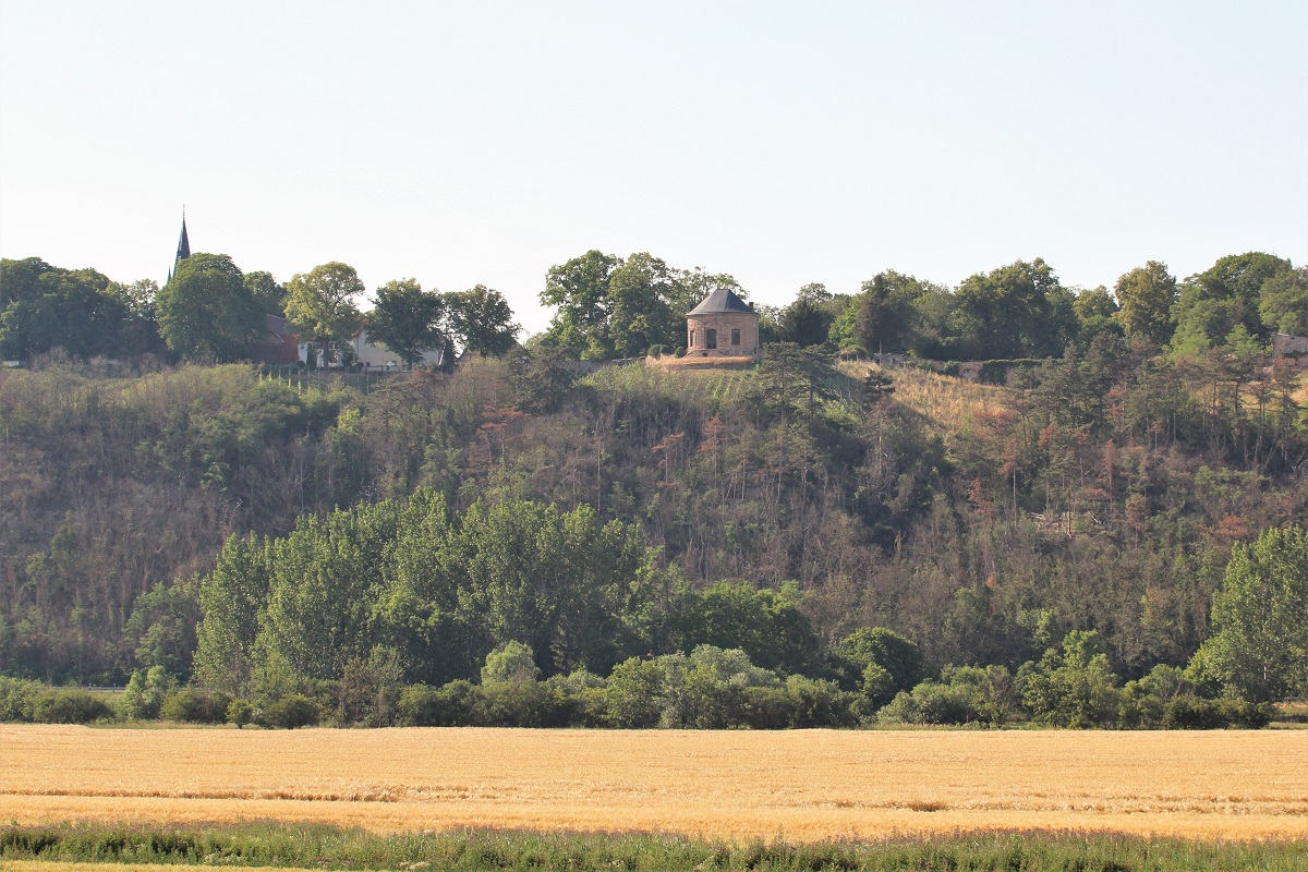 Saale-Unstrut Weinberg Vitzenburger Schlossberg