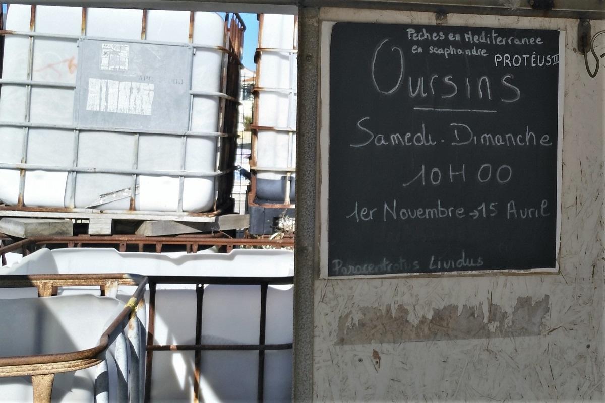 Fischmarkt Carro Frankreich