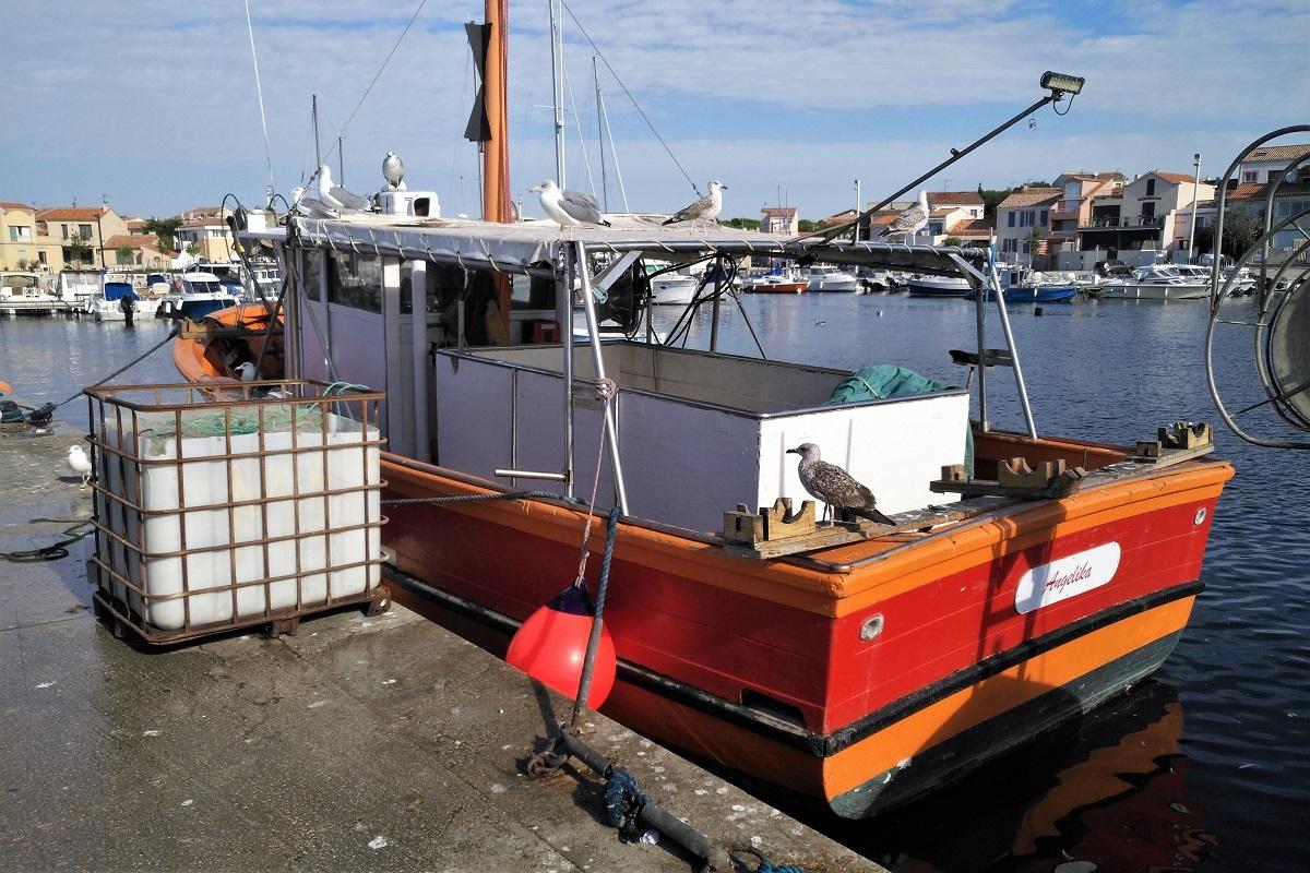 Fischerboot Carro