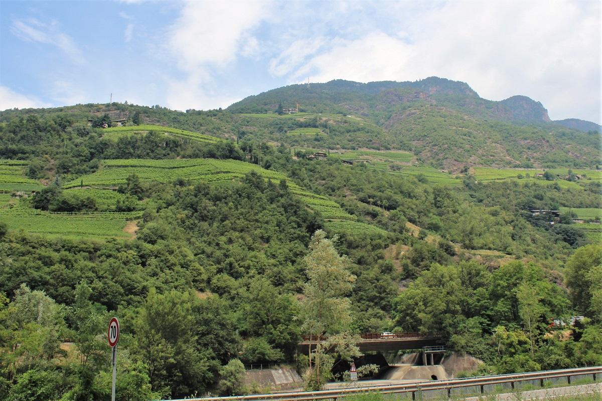 Eisacktal Wein Südtirol