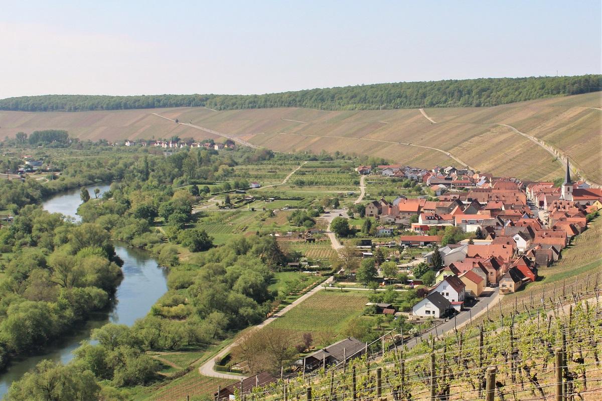 Escherndorf Fürstenberg Lump