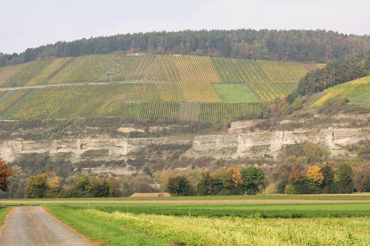 Stettener Stein Rossthalberg