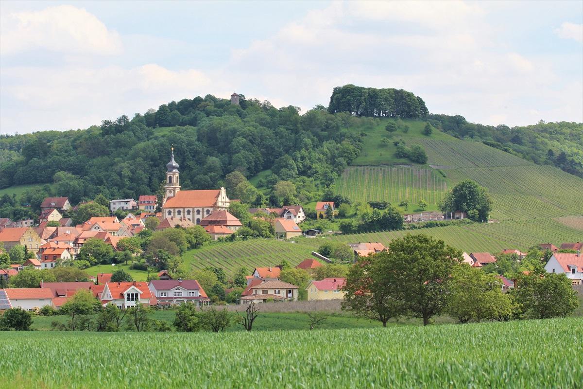 Franken Weinberg Casteller Schlossberg