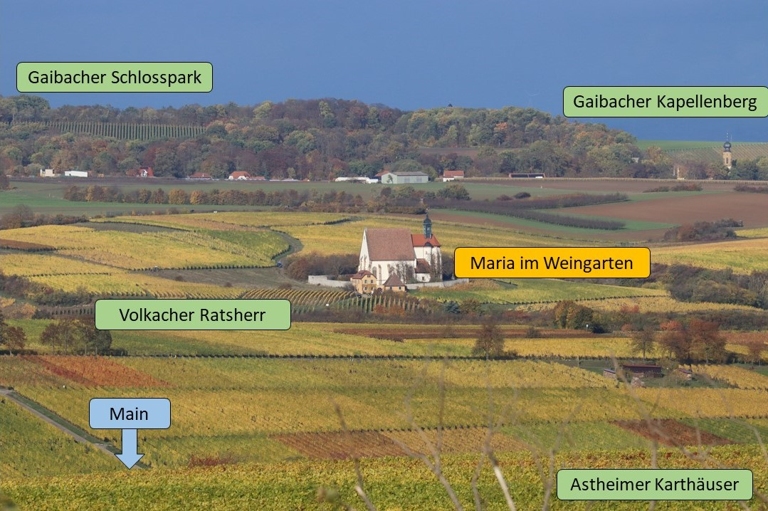 Lagen Schönborn