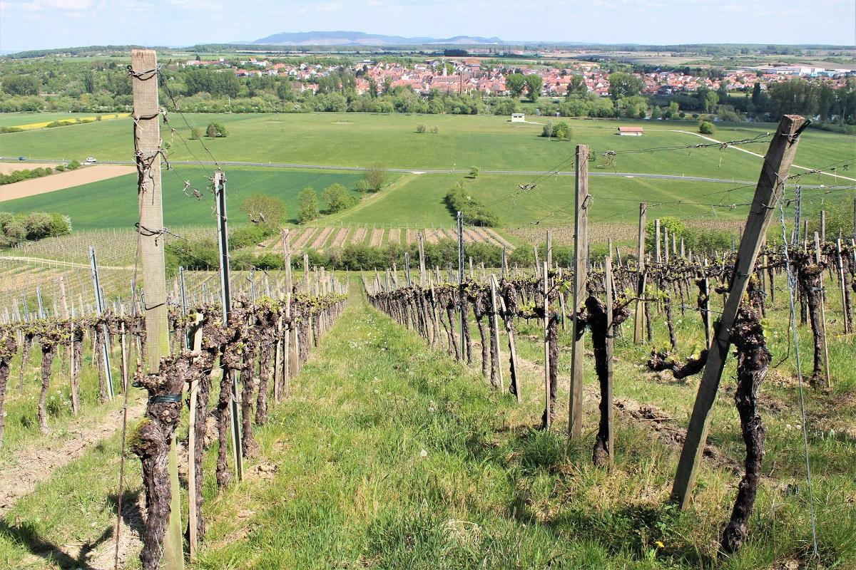 Sulzfelder Maustal