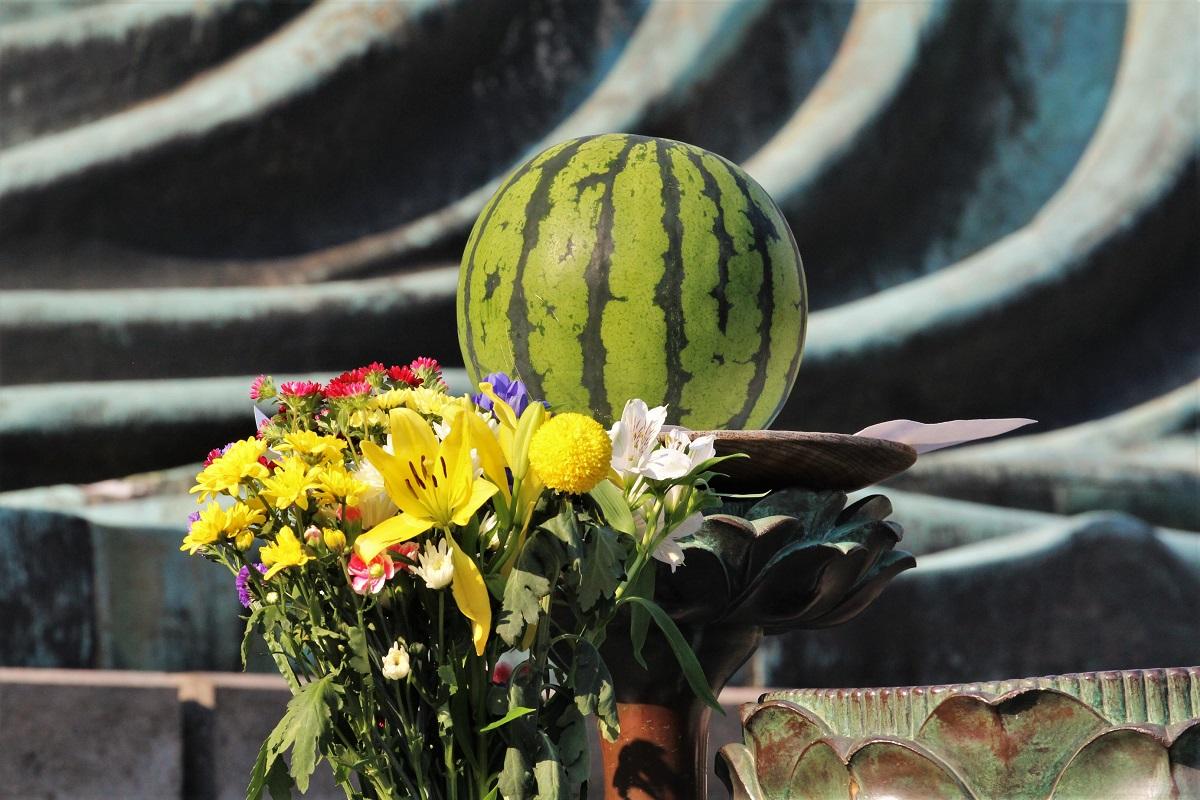 Daibutsu Melone