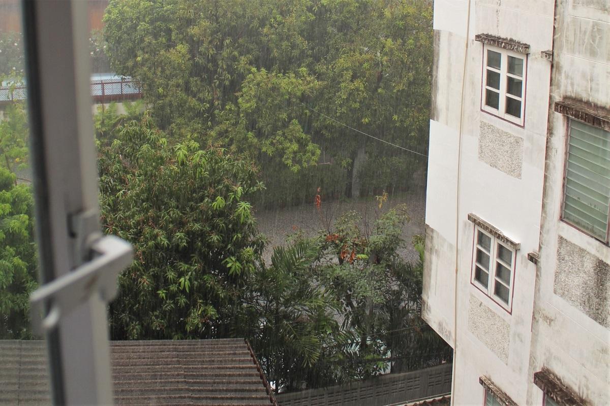Regen Tropen