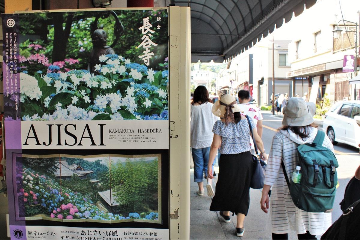 Ajisai Kamakura