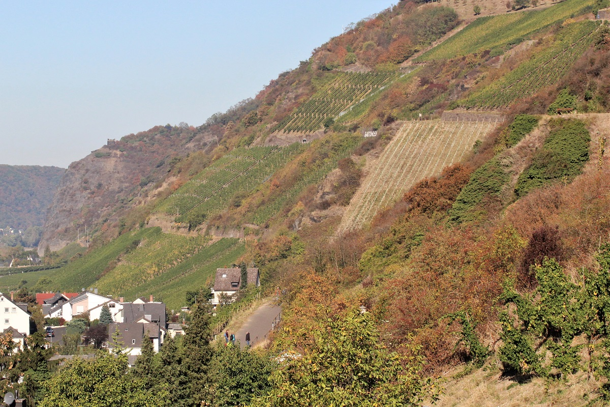 Leutesdorf Gartenlay Mittelrhein